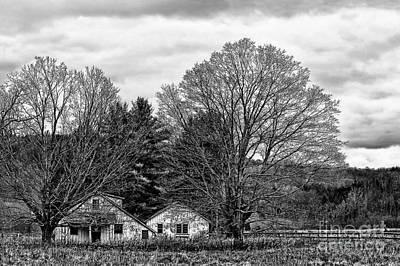 Photograph - Silver Spray Farm by Nicki McManus