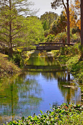 Water Reflections Photograph - Silver Springs Florida by Christine Till