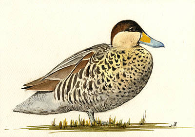 Duck Wall Art - Painting - Silver Teal by Juan  Bosco