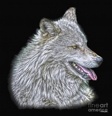 Animal Lover Digital Art - Silver Wolf by Skye Ryan-Evans