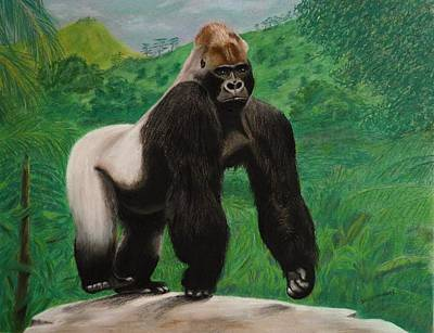 Silverback Gorilla Art Print by David Hawkes
