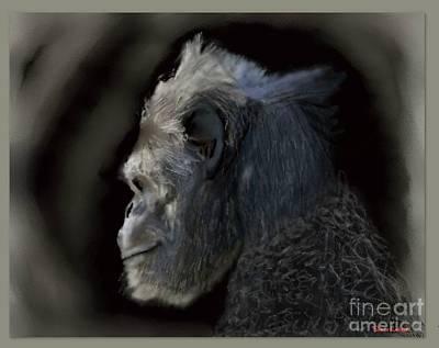Silverback  Gorilla  Original