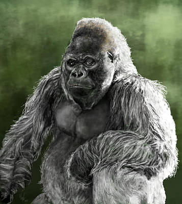 Digital Art - Silverback by Hannah Taylor