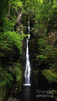 Print featuring the photograph Silverthread Falls by Debra Fedchin