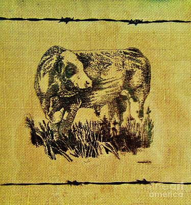 Drawing - Simmental Bull 12 by Larry Campbell
