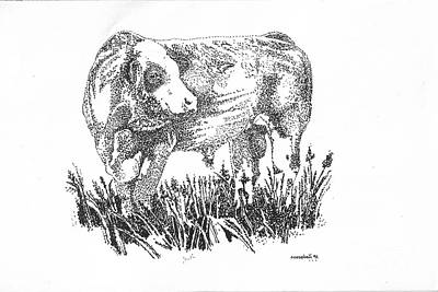 Selecting Drawing - Simmental Bull by Larry Campbell