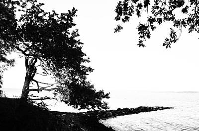 Photograph - Simple Life by Randi Grace Nilsberg
