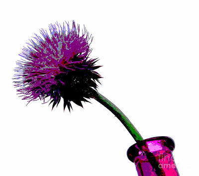 Thistle Photograph - Simple Pleasure by Krissy Katsimbras