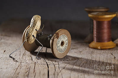 Cotton Photograph - Simple Things - Rolling The Thread by Nailia Schwarz