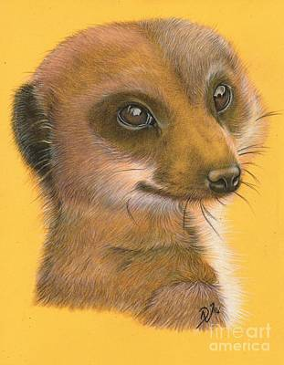Meerkat Drawing - Simples by Deborah Nicholas