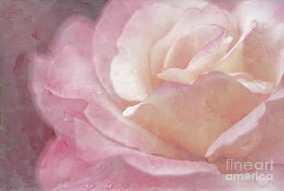 Simply Rose Art Print
