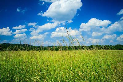 Virginia Photograph - Simply Summer by Shane Holsclaw