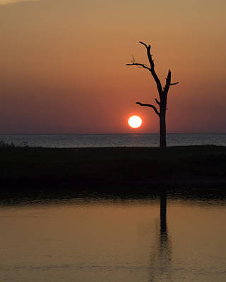Photograph - Simply Sunset by Maureen Cunningham