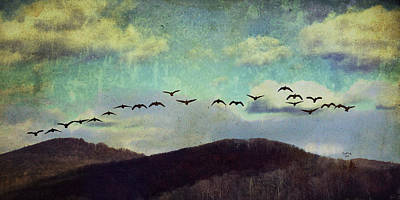 Geese Mixed Media - Since I Met You Baby by Trish Tritz