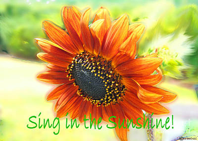 Digital Art - Sing In The Sunshine by Lizi Beard-Ward