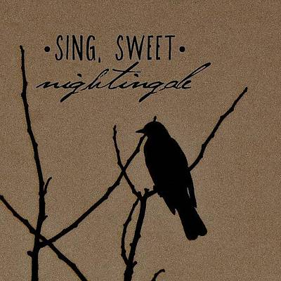 Natural Photograph - Sing, Sweet Nightingale by Traci Beeson