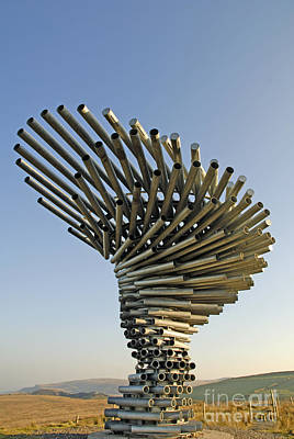 Photograph - Singing Ringing Tree by Brenda Kean