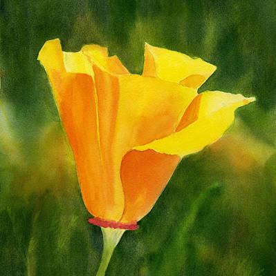 California Poppies Painting - Single California Poppy by Sharon Freeman