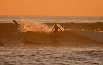 Winter Animals Rights Managed Images - Single Fin Cutback Royalty-Free Image by Thomas Kaestner