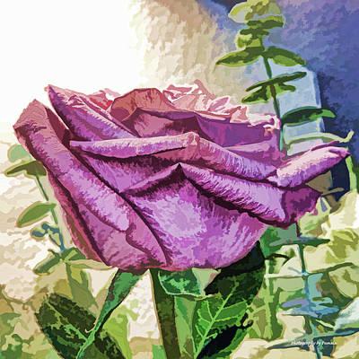 Mixed Media - Single Purple Rose by Pamela Walton