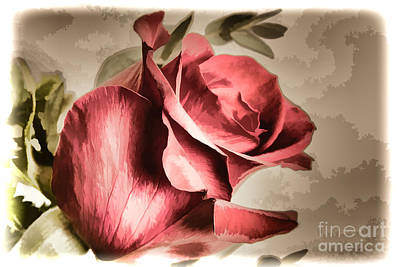 Painting - Single Red Rose Flower Painting In Sepia 3183.02 by M K Miller