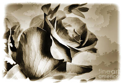 Painting - Single Rose Flower Painting In Sepia 3183.01 by M K Miller