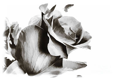Painting - Single Rose Flower Painting In Sepia 3187.01 by M K Miller