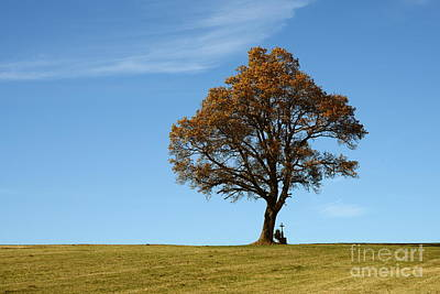 Single Tree With Wayside Cross Print by Karin Stein