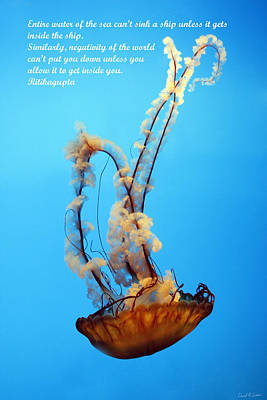 Sinking Art Print by David Simons