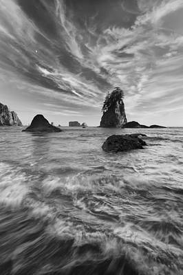 Olympic National Park Photograph - Siren Of The Sea by Joseph Rossbach