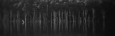 Photograph - Sirens Hiding by Steven Huszar