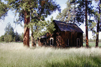 Sisters Homestead Art Print by Ray Finch