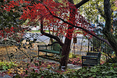Photograph - Sit Down And Relax by Robert Culver