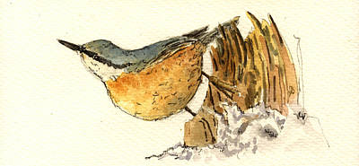 Nuthatch Painting - Sitta Europaea by Juan  Bosco