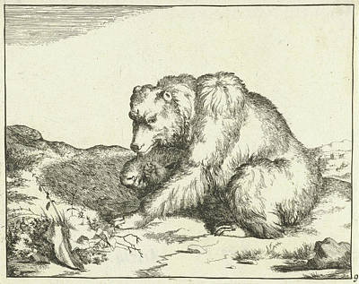 Sitting Bear Drawing - Sitting Bear, And Profil, Print Maker Marcus De Bye by Marcus De Bye And Marcus Gerards I