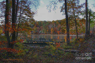 Photograph - Sitting Deck At Sloppy Floyd Lake by Barbara Bowen