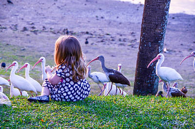 Photograph - Sitting Girl With Ducks by RobLew Photography