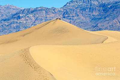 Sitting Pretty -top Of A Large Sand Dune In Death Valley National Park In California Art Print by Jamie Pham