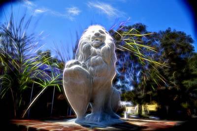 Photograph - Sitting Proud by Robert Palmeri