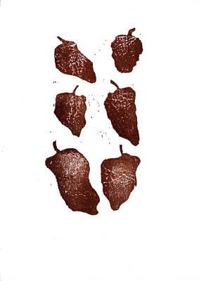 Cookbook Digital Art - Six Ancho Chiles by David Esslemont