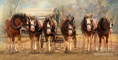 Shire Horse Digital Art - Six On The Hitch by Trudi Simmonds