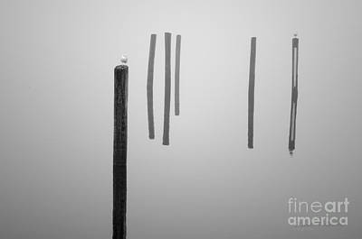 Photograph - Six Pilings Taunton River by Dave Gordon
