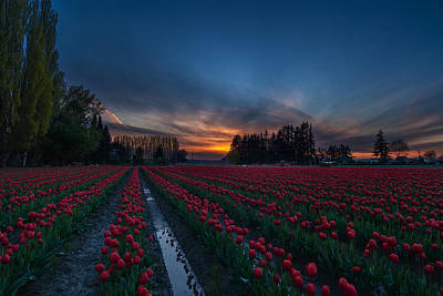 Photograph - Skagit Valley Evenings Close by Mike Reid