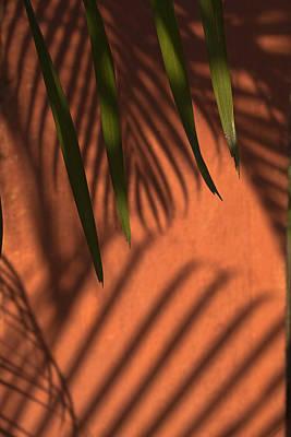 Just Desserts - SKC 5522 Shadows and Pattern by Sunil Kapadia