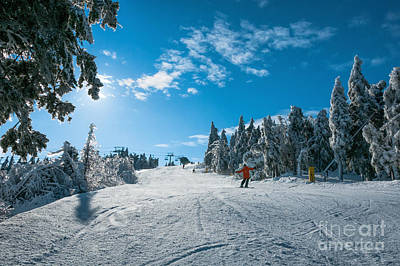 Photograph - Ski Day by Sharon Seaward