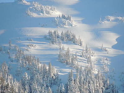 Art Print featuring the photograph Ski by Karen Horn