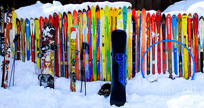 Photograph - Adventure Ski by Nancy Yuskaitis