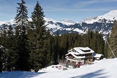 Winter Animals - SKI UND BERGHAUS SCHIFER davos parsenn klosters land by Andy Smy