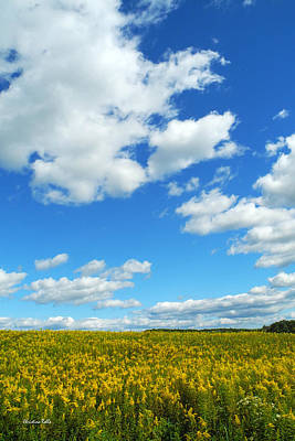 Photograph - Skies The Limit Landscape by Christina Rollo