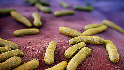 Organism Wall Art - Photograph - Skin Bacteria by Thierry Berrod, Mona Lisa Production